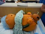 Pumpkinbirth