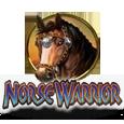 Norse warrior