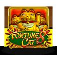 Fortune8cat