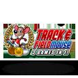 Track  field