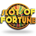 Slot of fortune