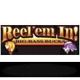 Reel em in   big bass bucks