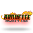 Bruce lee   dragons tale