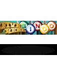 5 reel bingo
