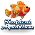 Tropical aquarium