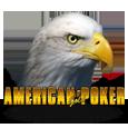 American gold poker