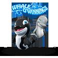 Whale o winnings