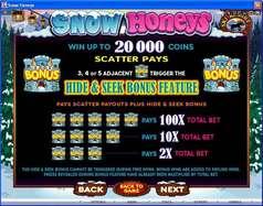 Game Review Snow Honeys
