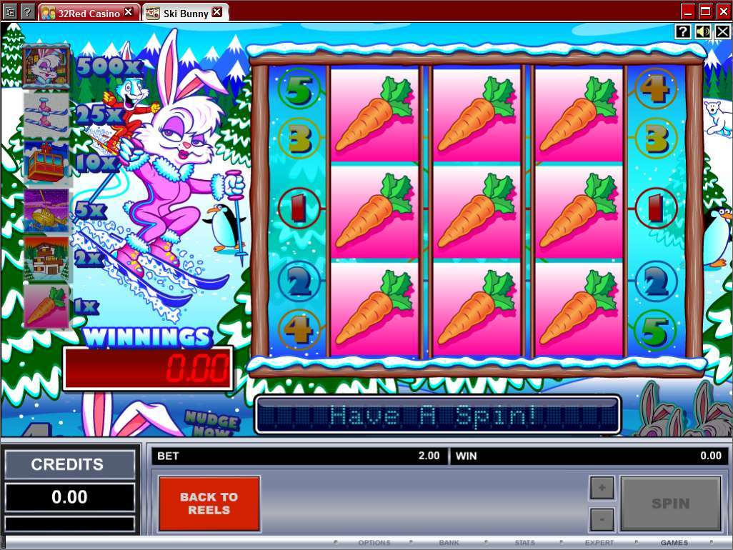 Game Review Ski Bunny
