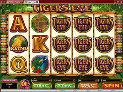 Game Review Tiger's Eye