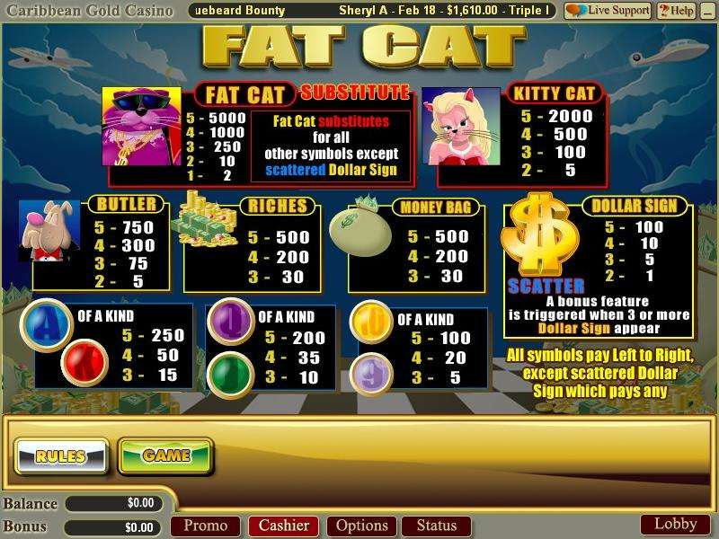 Game Review Fat Cat