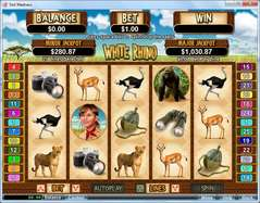 Game Review White Rhino