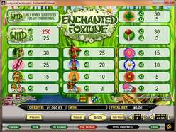 Game Review Enchanted Fortune