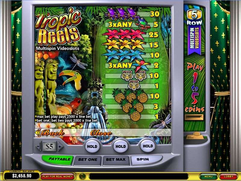 Game Review Tropic Reels Multi-Spin Slot
