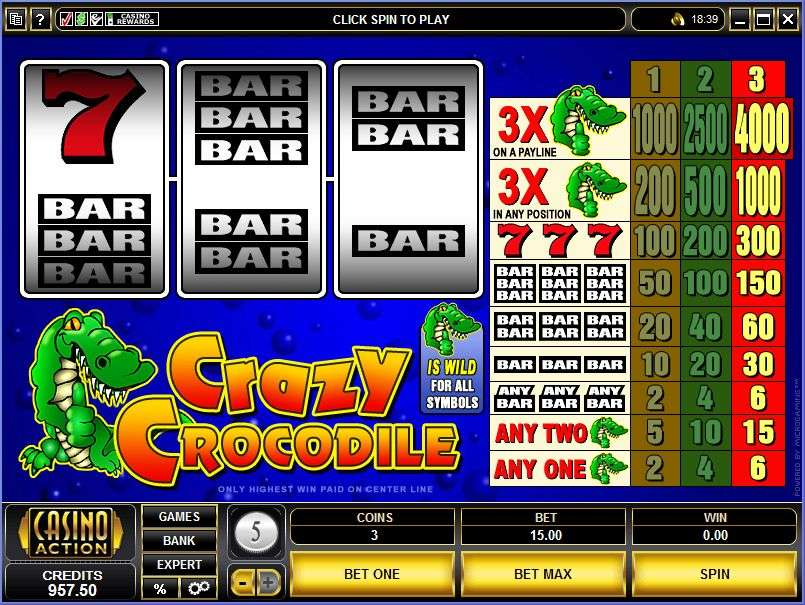 Game Review Crazy Crocodile