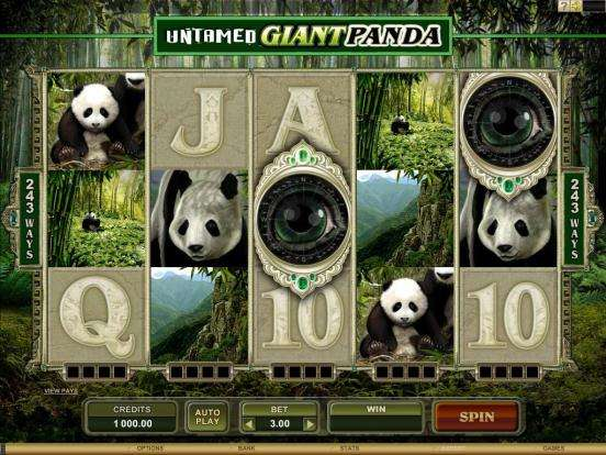 Game Review Untamed Giant Panda