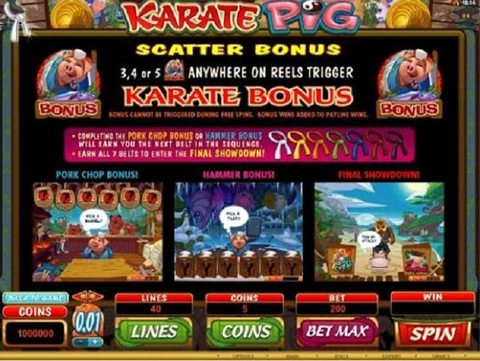 Game Review Karate Pig