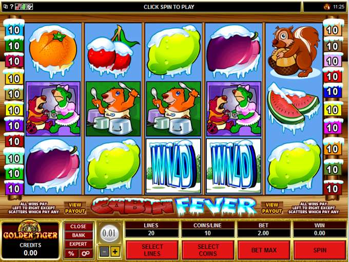 Cabin Fever Slot - Play the Microgaming Casino Game for Free