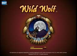 Game Review Wild Wolf