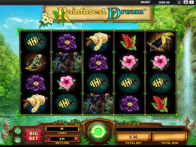 Game Review Rainforest Dream