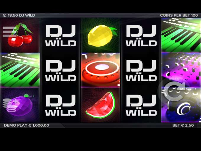 Game Review DJ Wild