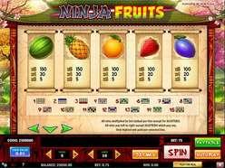 Game Review Ninja Fruits