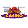The new phoenix casino