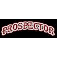 Holiday inn  prospectors casino