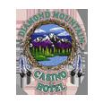 Diamond mountain logo