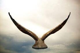 A True Gambler Never Settles Down - He Is Free As a Bird