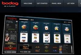 Bodog Online Live Dealer Studio Underway