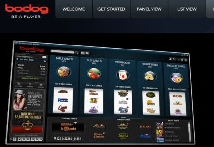 More Staff Recruited at Bodog Europe
