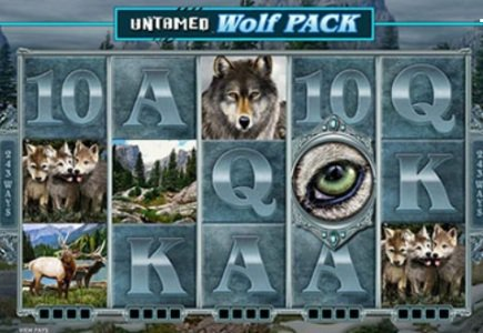New Microgaming Release from 'Untamed' Series