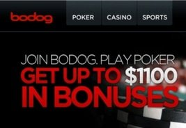 Additional Charges Against Former Bodog Exec Robert Gustafsson