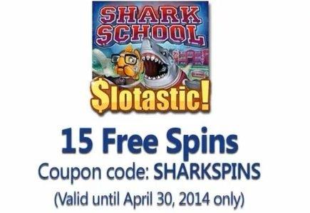 Shark School Live at Slotastic