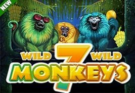 New Slot Titles from TopGame