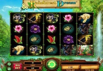 WMS Launches Rainforest Dream