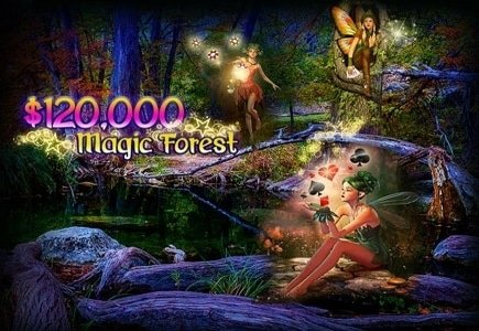Intertops Casino Hosts November Magic Forest Event