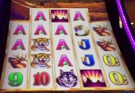 Aristocrat's Buffalo Grand Pays $2.64M in Jackpots Across Four American Casinos