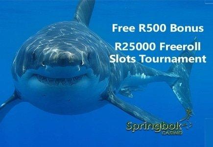 Shark Month at Springbok Casino