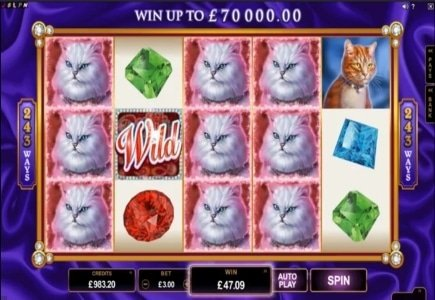 May/June Slot Releases from Microgaming