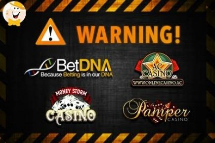 Counterfeit Software at Pamper Casino and Its Sister Sites
