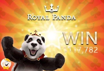 Congrats to $117K Royal Panda Winner