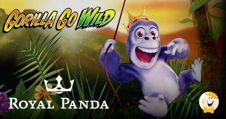 $84K Gorilla Go Wild Jackpot for Royal Panda Player