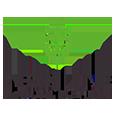 Lionline logo