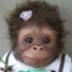 MsDaubAlot avatar
